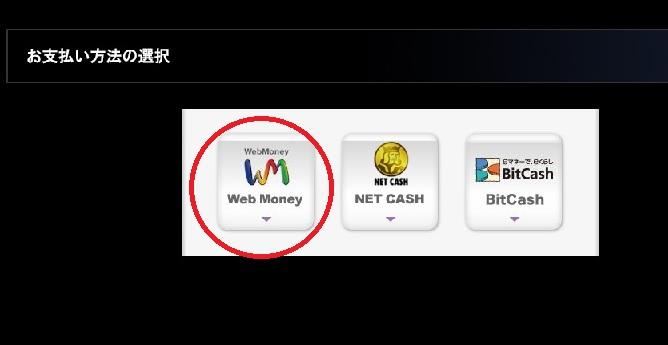 13-WebMoneyを選択
